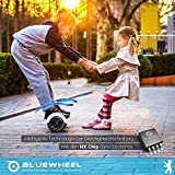 Bluewheel HX310s - 6
