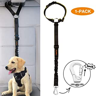 travel leash