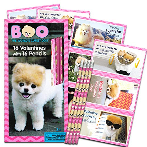 Boo the World's Cutest Dog 16 Valentines with 16 Pencils