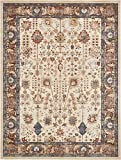 Traditional Persian Rugs Vintage Design Inspired Overdyed Fancy Beige 9' x 12' Afshan St. James Area Rug