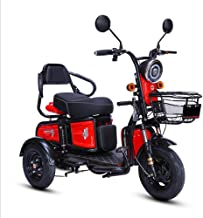 tricycle for adults with disabilities