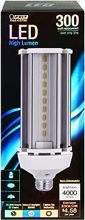 Feit Electric C4000/5K/LED LED Light Bulb, Yard