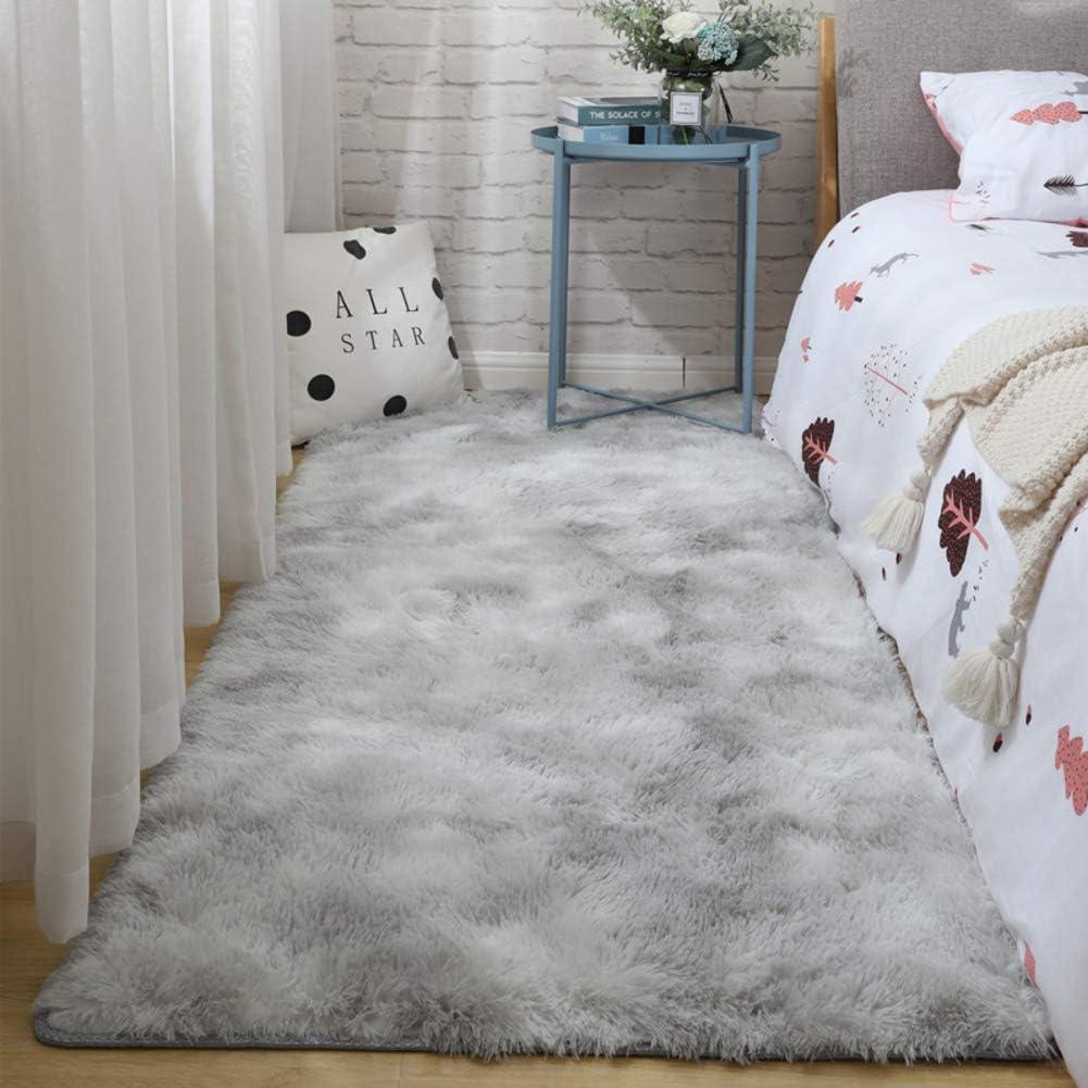 WODENINEK Ultra National products Soft Living Room Area Plush Washable OFFicial Rug shag Fl