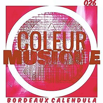 BORDEAUX CALENDULA  [COLEUR026]