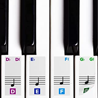 Color Piano Stickers for Keys w/Complete Printed Notes on Gr