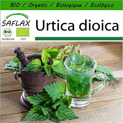 SAFLAX - Ecológico - Ortiga - 2000 semillas - Urtica dioica