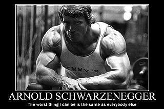 bribase shop Arnold Schwarzenegger Inspiration Bodybuilding Poster 36 inch x 24 inch / 20 inch x 13 inch