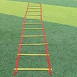 MOLLYNANA échelle d'agilité, la Vitesse de Formation des échelles d'exercice pour Les Sports Jeu de Jambes de Boxe du Monde de Football Vitesse la Formation d'agilité avec Mallette de Transport.
