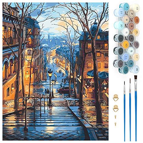 Pintar por Numeros, Pintura por Números Vista Nocturna de la Ciudad Kits, Cuadro Pintar con Numeros para Adultos/Niños, Pintar por Números Decoraciones para el Hogar (Sin Marco, 40x50CM)