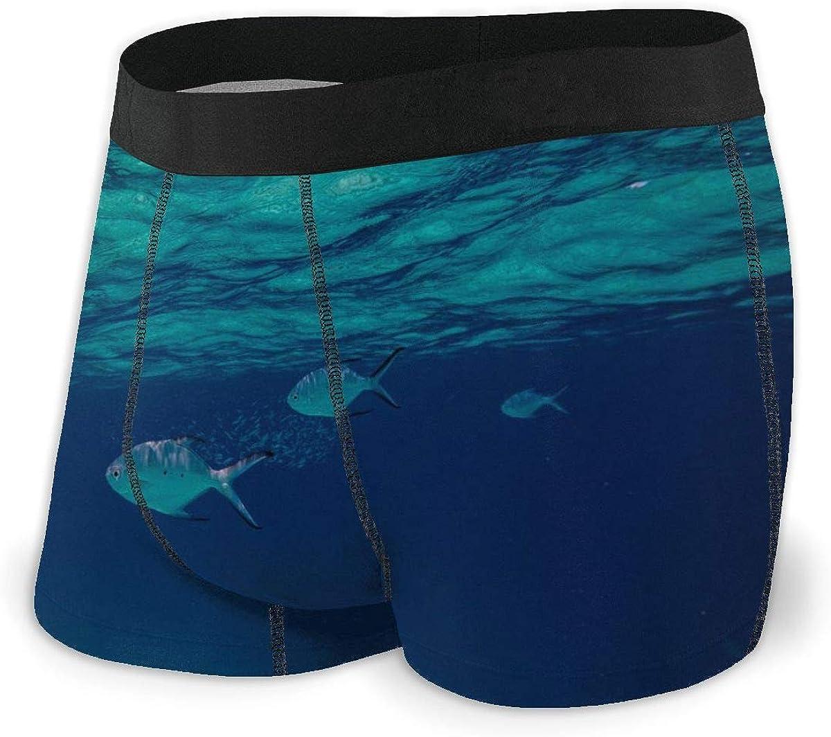 Randolph Wordsworth Mens Boxer Briefs Deep Sea Fishes Breathable Underwear