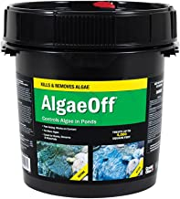 Best algae off algaecide Reviews