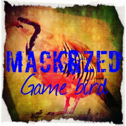 Game Bird (Original Mix)