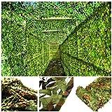 2x3m Woodland Tarnnetz Grün Armee Tarnnetz 6m 8m 10m for Camping Verstecken Garten Terrasse Pavillon Balkon Pergola Dekoration Mehrere Größen (Size : 5 * 10M)
