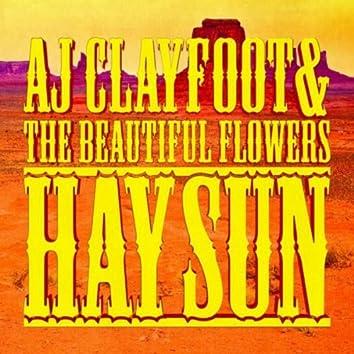 Hay Sun