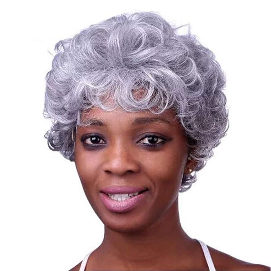偽造賄賂公Kerwinner 本物の髪として女性のための前髪天然合成フルウィッグと白人女性ストレートグレーの髪のかつらをショートウィッグ