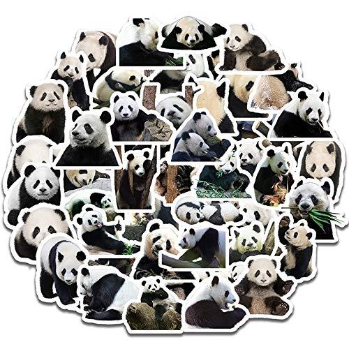 HONGC Panda de Dibujos Animados Lindo Pegatina clásico Doodle Maleta portátil con Forma de monopatín teléfono móvil Equipaje calcomanía Pegatina de Juguete 50 Uds