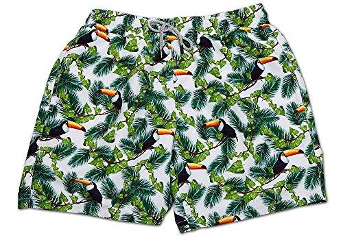 SUNDAZE The Tremendous Toucan Swimwear | Dude COLECCIÓN 2016 | Orange Label | Premium Men's Beachwear | COLECCIÓN DE Caballero