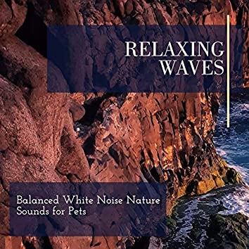 Relaxing Waves - Balanced White Noise Nature Sounds for Pets