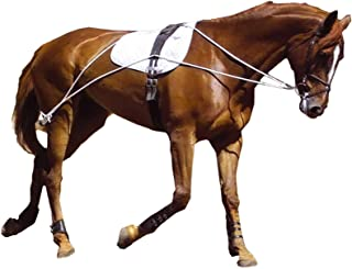 Hunters Saddlery Ultimate Horse Lunging Training Aid System Lunge Equipment for Pony Cob Horse Draft Size