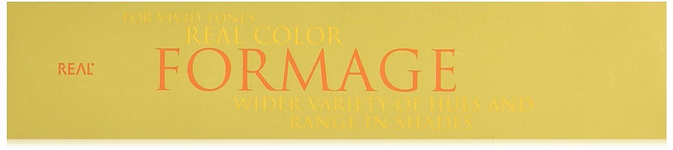 溶かすイタリック画家フォルマージュ(FORMAGE) ヘアカラー  1剤 120g 9-G