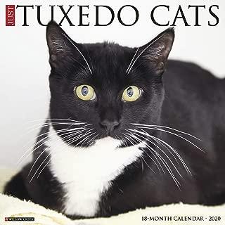 Just Tuxedo Cats 2020 Wall Calendar