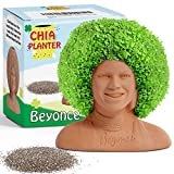 Beyonce Chia Decorative Pottery Planter (4.5' x 4.5' x 3.5') - Chia Seeds Included - Plant and Grow Beyonce's Hair - Funny Novelty Gift