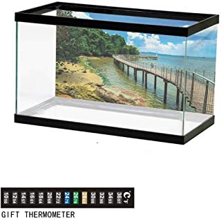 wwwhsl Aquarium Background,Clouds,Sunset Scenery Over The Clouds Imaginary Secret Weather Lands Natural Wonders on Earth,Orange Fish Tank Backdrop