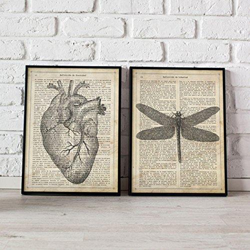 Nacnic Vintage Herz und Libelle Poster. Vintage Stil Wanddekoration Abbildung von Anatomie und Insekten mit Bucherseite Hintergrund. Verschiedene kreative Bilder ohne Rahmen. Größe 24x30cm.