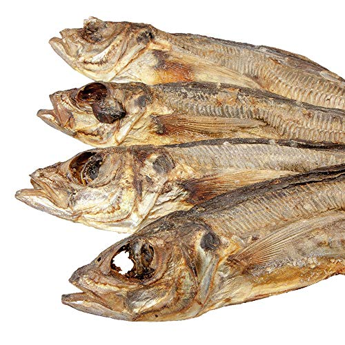 Schecker 250 g Makrele ganze Fische - 100{ba18beeac1da1bcbab223c76f94de39c0f1edb19f3875e45035e80de3037b9fe} Holzmakrele - EIN gesunder Hundesnack - auch für Sensitive Hunde