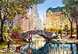 Puzzle de madera 1000 Central Park oil floor puzzle para adultos, a partir de 14 piezas, madera jumbo