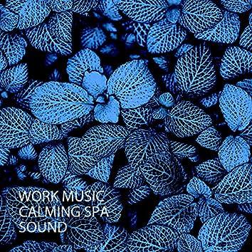 Work Music: Calming Spa Sound