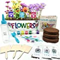 Hapinest Flower Garden Growing Kit Kids Gifts for Girls and Boys Ages 6 7 8 9 10 Years Old and up