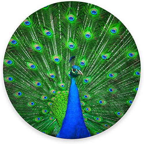 """Round Mouse Pad, Peacock Mouse Pad, Pretty Animal Gaming Mouse Mat Waterproof Circular Small Mouse Pad Non-Slip Rubber Base MousePads for Office Home Laptop Travel, 7.9""""x0.12"""" Inch"""