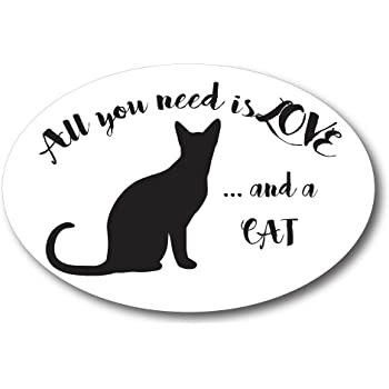 All You Need is Love.and a Cat 4x6 Oval Car Magnet Decal Heavy Duty Waterproof
