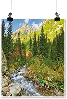 On Canvas Prints Roztoka Stream Tatra National Carpathian Poland Paintings for Wall Decor,20