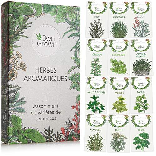 Kit de graines d'herbes aromatiques prêt à pousser OwnGrown, 12 épices et aromates à planter en un kit pratique,...