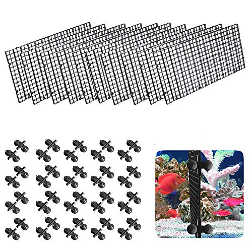 10 Stück Aquarien Tablett Tank Trennwand Plastik Aquarium Isolation Plastik Aquarium Divider Kunststoff Aquarium Isolation Schwarz für Verschiedene Fische zu Trennen den Fisch vom Kampf Abhalten