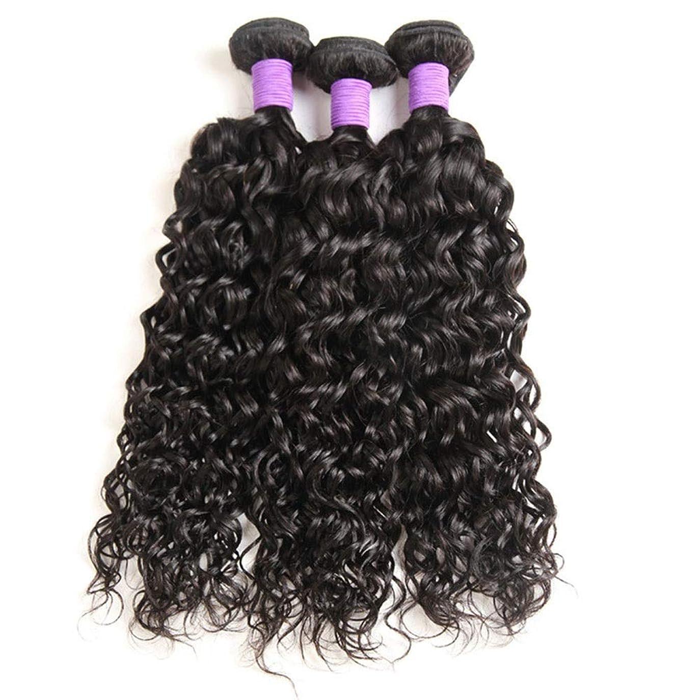 幾分メナジェリー年齢Yrattary ブラジルのウォーターヘアー織り1束、100%ブラジルのウォーターウェーブ人間の毛髪延長100 g /バンドル1つの女性の合成かつらレースのかつらロールプレイングウィッグのナチュラルカラーパック (色 : 黒, サイズ : 18 inch)