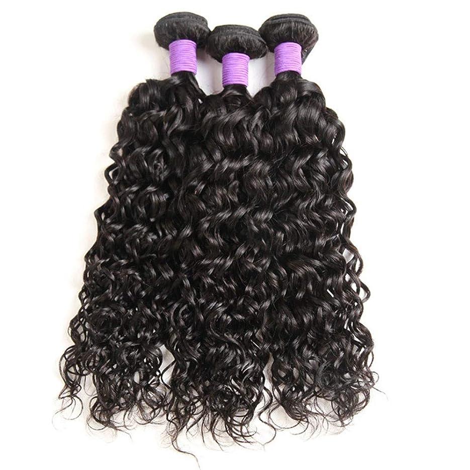 セメント収縮ひもBOBIDYEE ブラジルのウォーターヘアー織り1束、100%ブラジルのウォーターウェーブ人間の毛髪延長100 g /バンドル1つの女性の合成かつらレースのかつらロールプレイングウィッグのナチュラルカラーパック (色 : 黒, サイズ : 14 inch)
