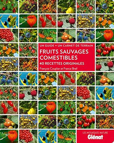 Fruits sauvages comestibles: 40 recettes originales