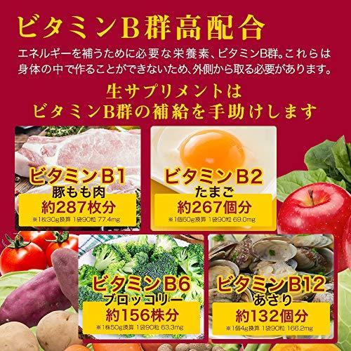 【公式】酵水素328選生サプリメント燃(90粒)