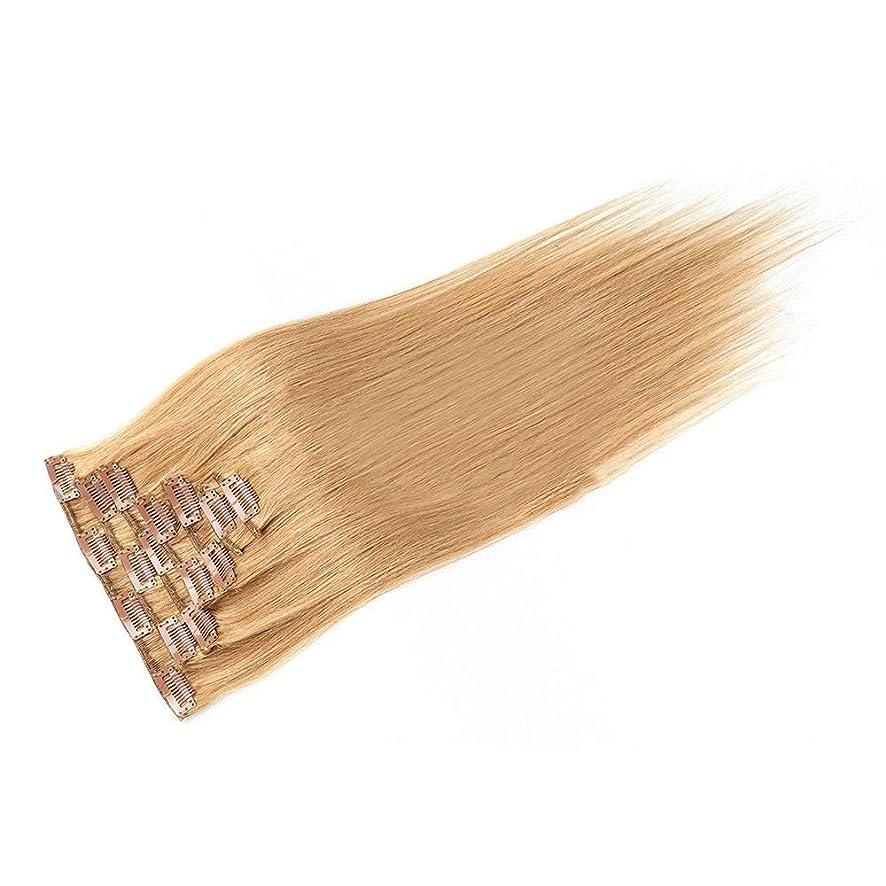 ご覧くださいメタリック気怠いHOHYLLYA 20インチ人毛エクステンションクリップイン - ダブル横糸ストレートヘア - 100%レミーヘア7個フルヘッド(20