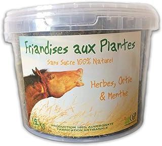 WAFER FIBRES Friandises pour Chevaux aux Plantes, 100% Naturelles, sans sucres ajoutés, sans céréales