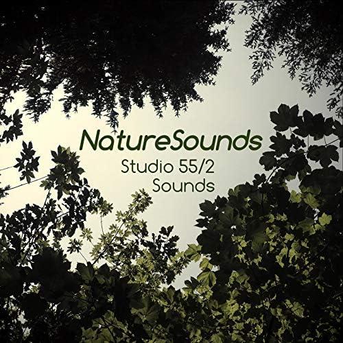Studio 55 2 Sounds