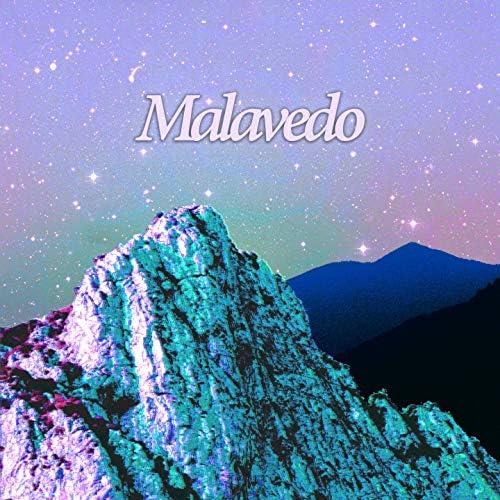 Malavedo