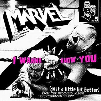 I Wanna Know You
