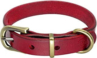 Best chihuahua dog collar Reviews