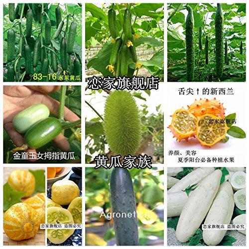 Graines de légumes Concombre graines 30seeds / sac