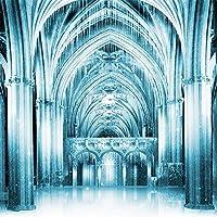 アルバクリエイティブ写真背景 – 氷の宮殿 – 10x10フィート – 100%シームレスポリエステル