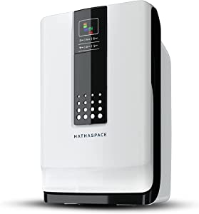 Hathaspace Hsp001 Smart Hepa Air Purifier